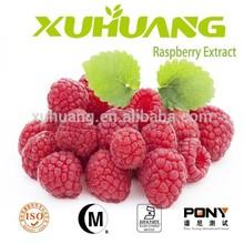 alibaba china health food raspberry leaf extract/raspberry seed extract