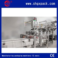 2015 new tech automatic packing machine for potato chips