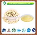 100% naturelle pure de graines de citrouille en poudre p. E.