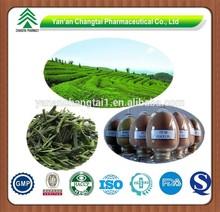 High Purity Green tea extract 98% Tea Polyphenols
