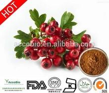 100% Pure Nature 20% Flavone Hawthorn Fruit P.E.