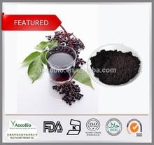 100% Natural Elderberry Extract , Black Elderberry Extract powder , Sambucus Nigra P.E. Anthocyanidin 25%