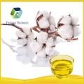 haute efficacité huile de coton de qualité alimentaire