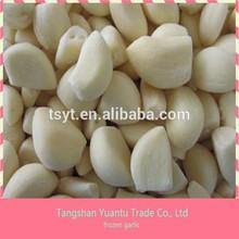 frozen garlic asian frozen vegetables and fruits