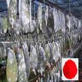 Alimentos orgánicos naturales colorantes cochinilla carmín