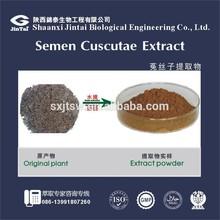 sex powder Semen Cuscutae Extract/Dodder Seed extract