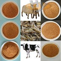 China supplier corn distillers grains/dried distiller grains solubles