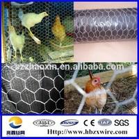 Animal Cage Hexagonal Wire Mesh