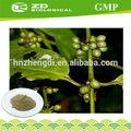 ervas naturais para reduzir a pressão arterial de ácido clorogênico hplc grão de café verde extrato