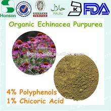 Echinacea Extract 4:1