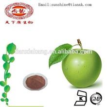 organic apple cider vinegar powder extract /green apple phloridzin