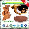 Natürliche pflanzliche yohimbe rinde extrakt-pulver für sex Ausdauer
