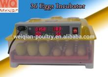 Weiqian type 36 chicken eggs or 144 quail eggs mini incubator WQ-36 quail egg incubator