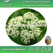 100% Natural Elder Flower Plant Extract 4:1~20:1