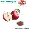 o nome latino de frutas maçã verde malus domestica extrato de pó