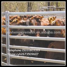 Cattle Yard Hurdle