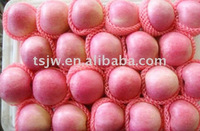 FRESH APPLES FROM CHINA BEST PRICE EXPORT DELICIOUS APPLES QINGUAN