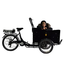 hot sale three wheel electric cargo bike tricycle
