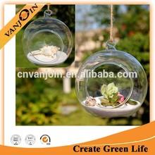 Ball Shape Hanging Glass Vase Succulent Plants For Home Decoration