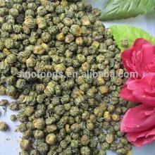 dried young chrysanthemum pyrethrum extract / chrysanthemum cinerariifolium