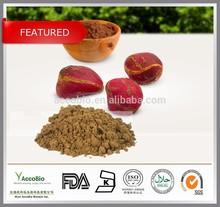 Top quality Kola nut extract, Kola nut extract powder, Kolanut P.E. 10:1 20:1 /Caffeine 5%
