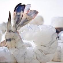 The Best Price For Frozen Vannamei Shrimp