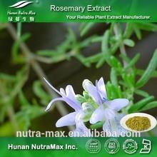Competitive Price Rosmarinus Officinalis P.E., Pure Rosmarinus Officinalis P.E. 10:1 Anti-Oxidant Cosmetics Ingredients