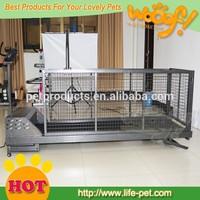 Pet dog Running Machine