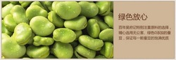 packaged nuts and snacks/salted broad beans/bulk garlic for sale