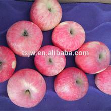 2015 Fresh Fruits & vegetables for sell Fuji Apples for promotion