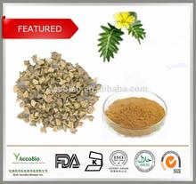 Free Sample Tribulus Terrestris 90% Bulk Powder/ Tribulus Terrestris Fruit Extract Powder