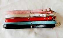 promotional dog collar and leash,fashion dog leash,smart dog leash