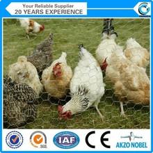 PVC coated or galvanized hexagonal wire netting