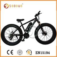 china lithium battery future bikes