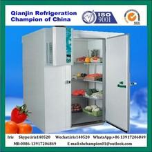 Walk-in Cold Room Chiller Freezer, Meat Fruit Cool Room