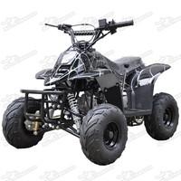 Mini ATV 110cc Auto With Reverse Quad Bike Long Swing Remote Control