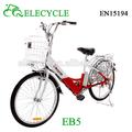 carga elétrica da bicicleta