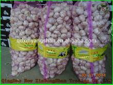 (HOT) Fresh white GARLIC/GARLIC SIZE: More Than 5CM