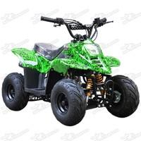 Sports Mini Quad Bikes For Kids 70 110cc Off Road ATV Automatic Dinosaur