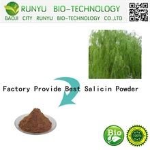Factory Provide Best Salicin Powder