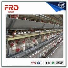 chrome plated chicken equipment chicken cage