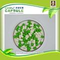 Cápsulas de gelatina vazias certificado fda/tamanhos 0,1,2,3,4/gel cápsulas