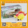 2015 taş devrinde dinozor oyuncak tekerlek düşük fiyata