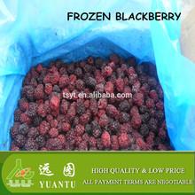 frozen blackberry importer from dubai
