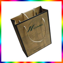 China manufacturer eco-friendly paper carrier bag
