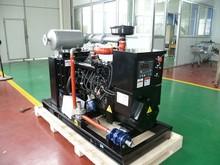 Planta de energía eléctrica de 37.5 kva generador de biogás