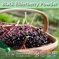 Negro saúco polvo ( 100% Natural de polvo de fruta fresca ) de 3 W fabricante