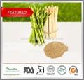 Toop qualidade Natural espargos root extrair pó 10:1