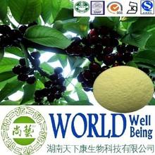 Hot sale Black cherry extract/Vitamin C 25%/Black Cherry Extract powder/Anti-stress hormones plant extract