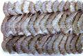 Nova congelado camarão nome científico de camarão vannamei camarão